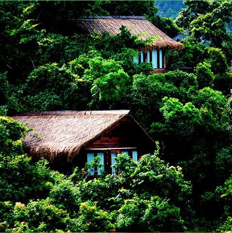 열대우림 객실