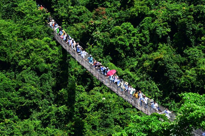 三亚国际文博会12月启幕 亚龙湾热带天堂森林公园等设图片